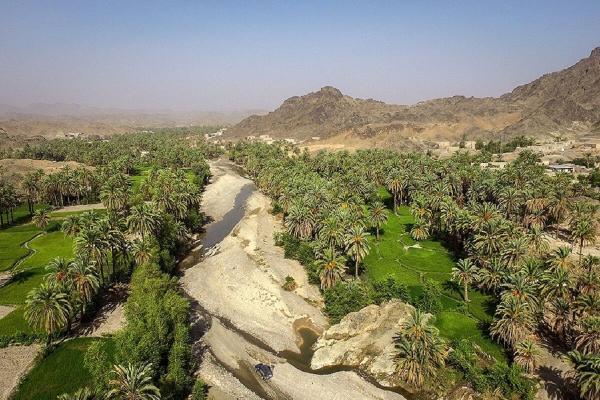 خبرنگاران مرکز شتاب بخش ایده های خلاق گردشگری استان مرکزی ایجاد می گردد